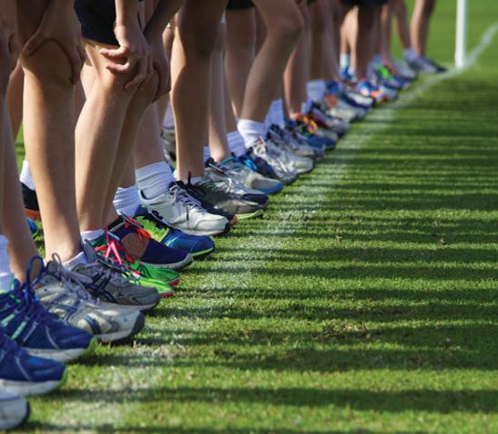 """Fundação do Desporto vê mais um projeto aprovado pela Comissão Europeia: ELIT-in """"Integração de atletas de elite no mercado de trabalho, pela valorização das suas competências transversais"""""""