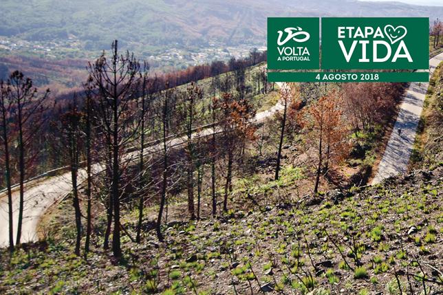 Etapa Vida da Volta a Portugal tem o apoio da Fundação do Desporto