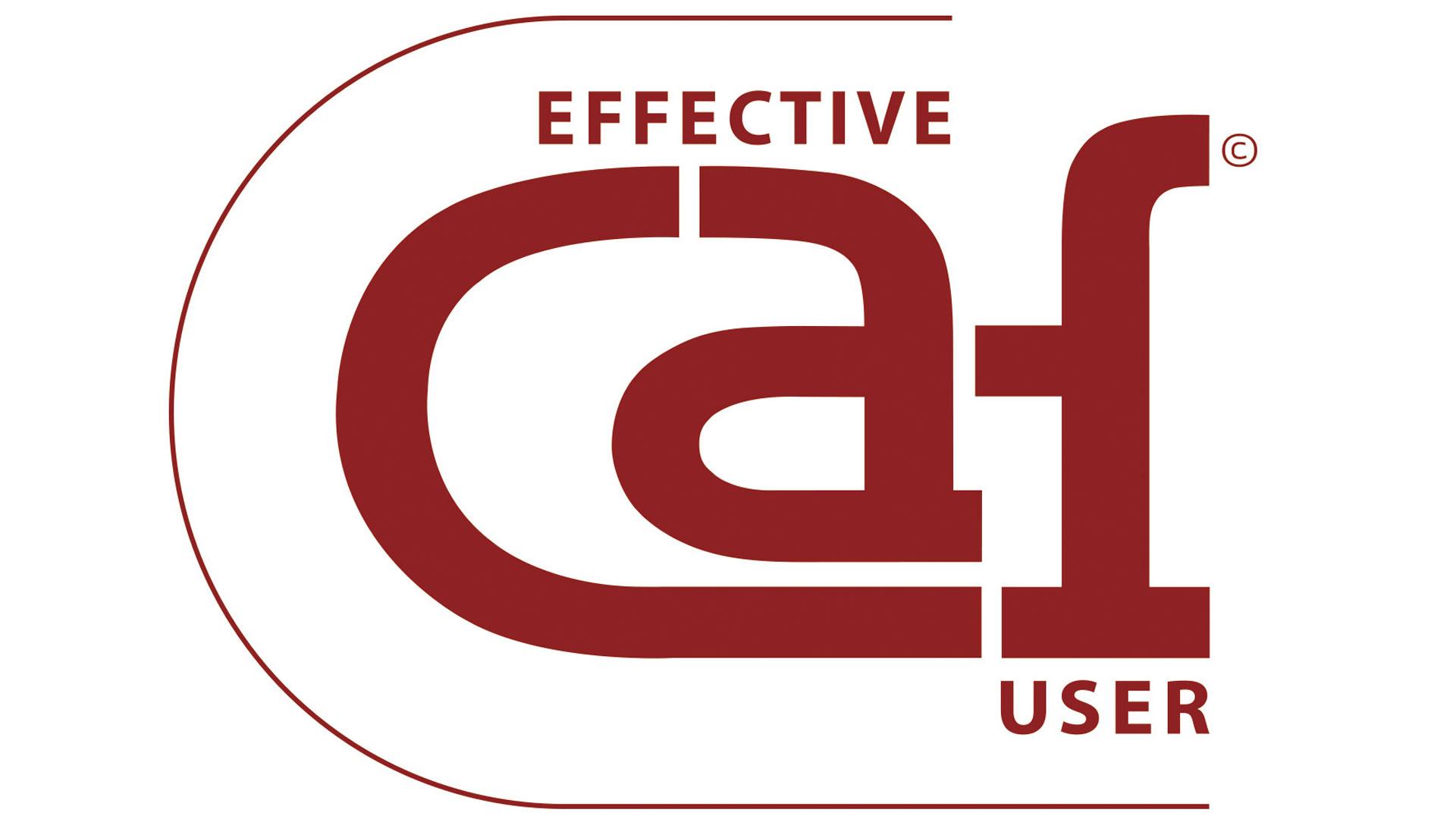 """Fundação do Desporto recebe distinção """"Effective CAF User"""""""